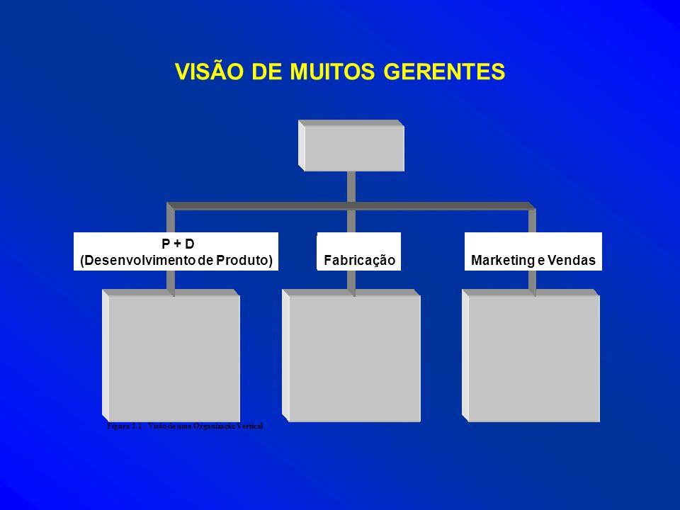VISÃO DE MUITOS GERENTES Figura 2.1 - Visão de uma Organização Vertical P + D (Desenvolvimento de Produto)FabricaçãoMarketing e Vendas