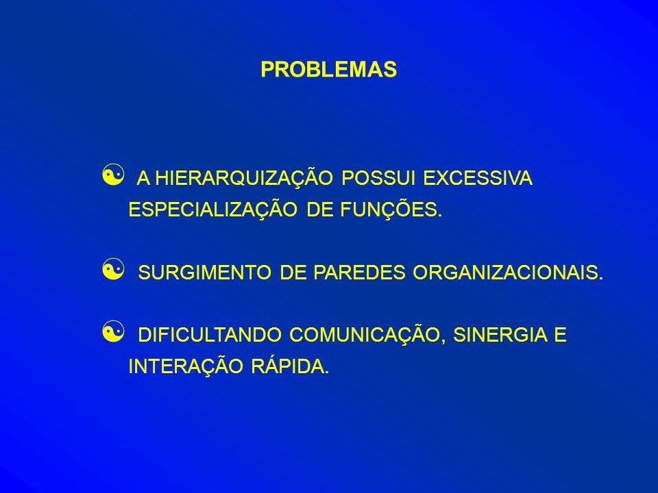 PROBLEMAS [ A HIERARQUIZAÇÃO POSSUI EXCESSIVA ESPECIALIZAÇÃO DE FUNÇÕES. [ SURGIMENTO DE PAREDES ORGANIZACIONAIS. [ DIFICULTANDO COMUNICAÇÃO, SINERGIA