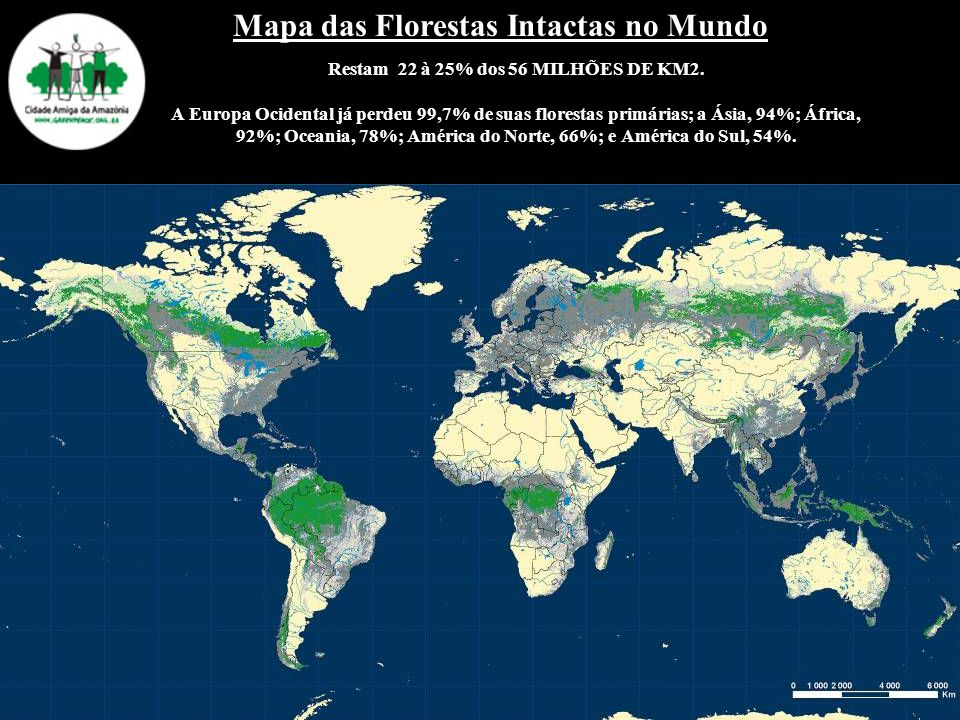 Restam 22 à 25% dos 56 MILHÕES DE KM2. A Europa Ocidental já perdeu 99,7% de suas florestas primárias; a Ásia, 94%; África, 92%; Oceania, 78%; América