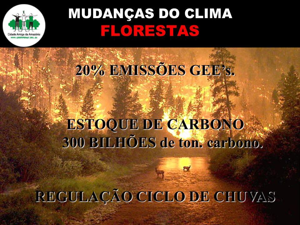 MUDANÇAS DO CLIMA FLORESTAS 20% EMISSÕES GEEs. ESTOQUE DE CARBONO 300 BILHÕES de ton. carbono. REGULAÇÃO CICLO DE CHUVAS