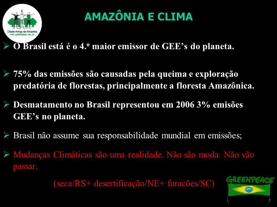 AMAZÔNIA E CLIMA O Brasil está é o 4. o maior emissor de GEEs do planeta. 75% das emissões são causadas pela queima e exploração predatória de florest