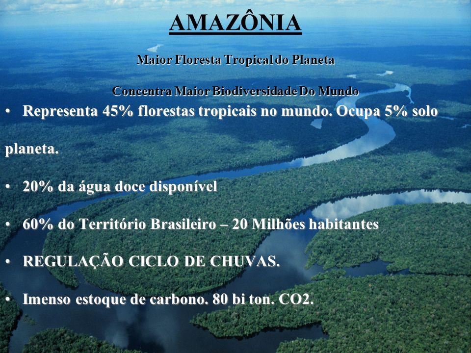 Maior Floresta Tropical do Planeta Concentra Maior Biodiversidade Do Mundo AMAZÔNIA Maior Floresta Tropical do Planeta Concentra Maior Biodiversidade