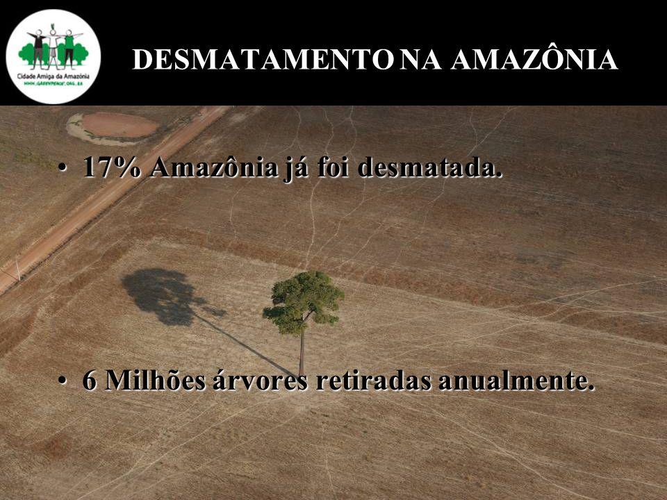 DESMATAMENTO NA AMAZÔNIA 17% Amazônia já foi desmatada.17% Amazônia já foi desmatada. 6 Milhões árvores retiradas anualmente.6 Milhões árvores retirad
