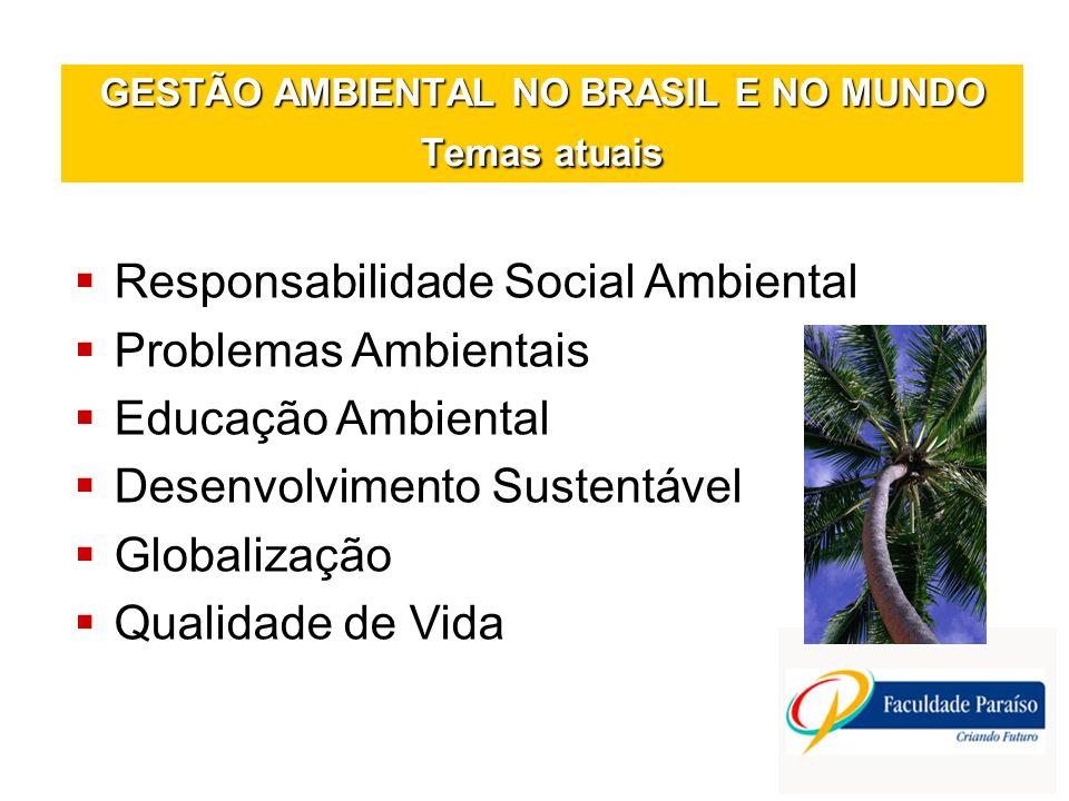 GESTÃO AMBIENTAL NO BRASIL E NO MUNDO Temas atuais Responsabilidade Social Ambiental Problemas Ambientais Educação Ambiental Desenvolvimento Sustentáv