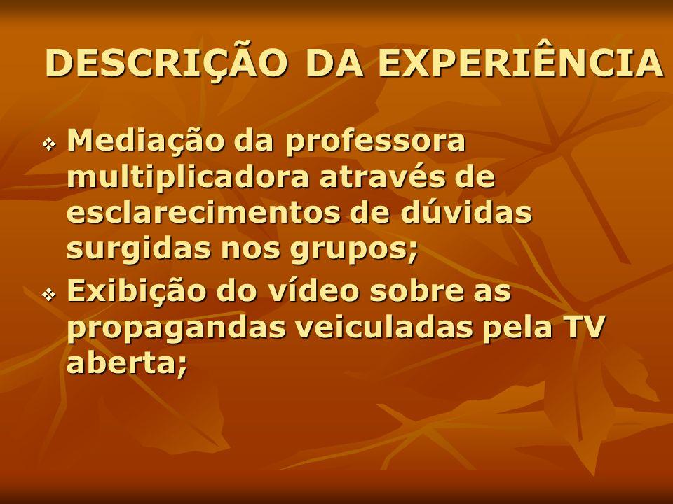 DESCRIÇÃO DA EXPERIÊNCIA Mediação da professora multiplicadora através de esclarecimentos de dúvidas surgidas nos grupos; Mediação da professora multi