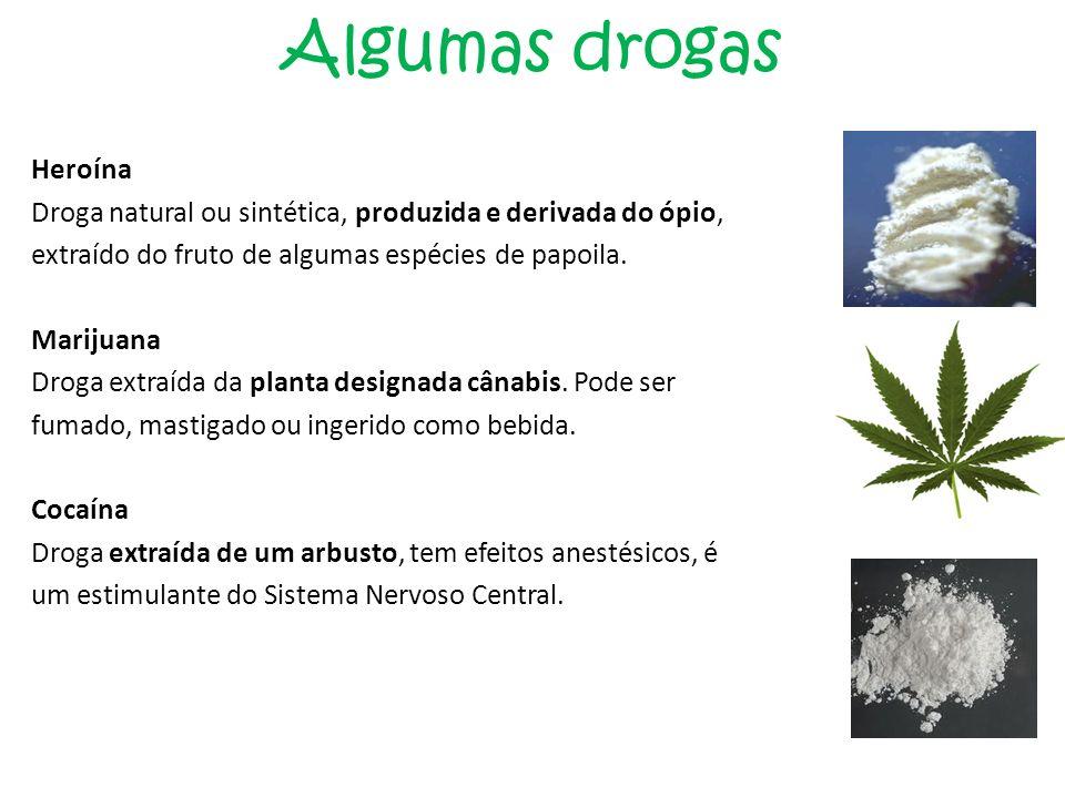 Algumas drogas Heroína Droga natural ou sintética, produzida e derivada do ópio, extraído do fruto de algumas espécies de papoila. Marijuana Droga ext