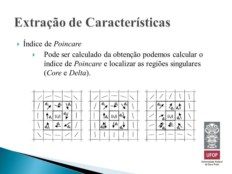 Índice de Poincare Pode ser calculado da obtenção podemos calcular o índice de Poincare e localizar as regiões singulares (Core e Delta).