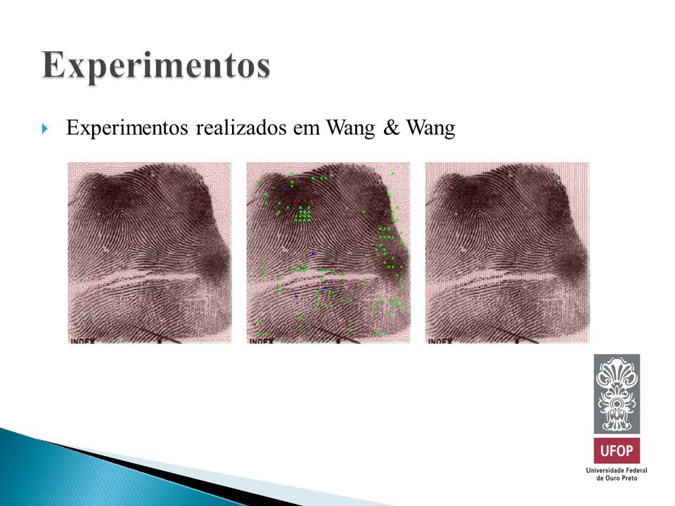 Experimentos realizados em Wang & Wang