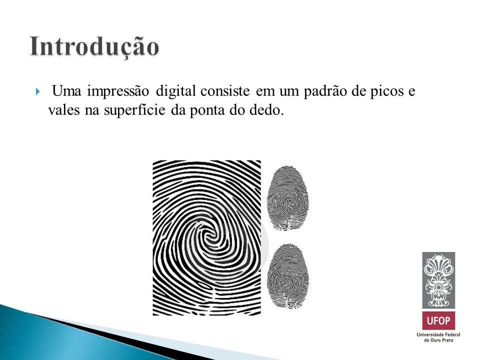 Uma impressão digital consiste em um padrão de picos e vales na superfície da ponta do dedo.
