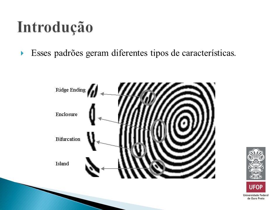 Esses padrões geram diferentes tipos de características.