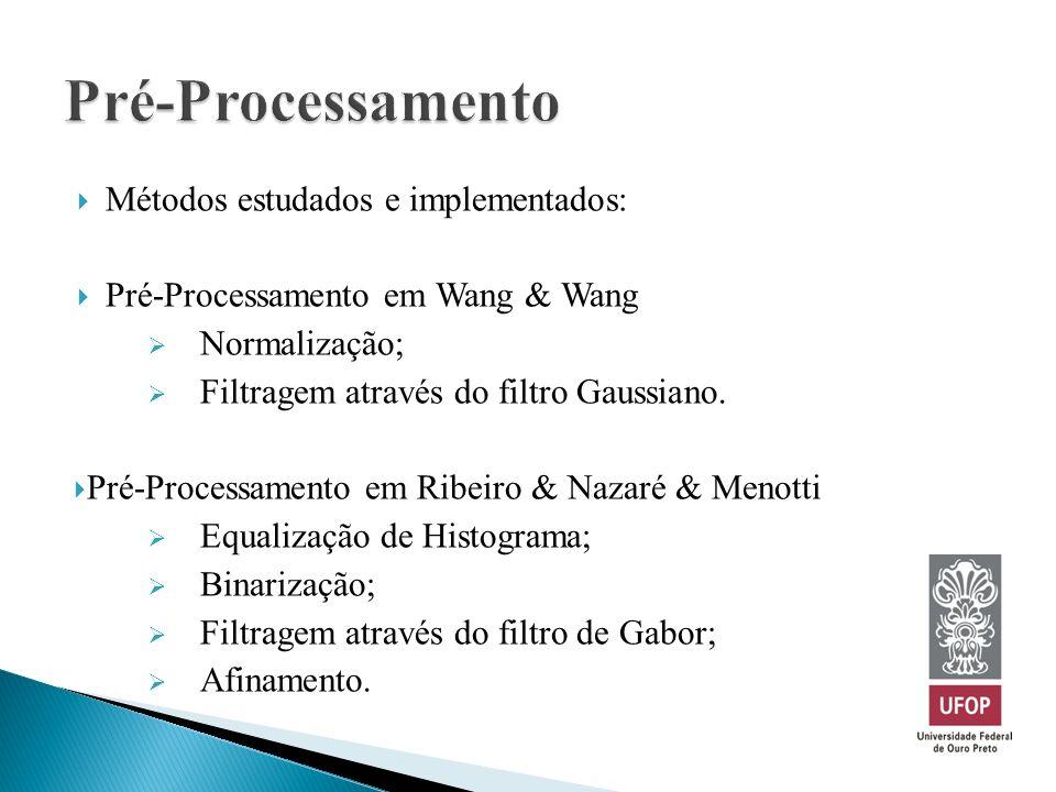 Métodos estudados e implementados: Pré-Processamento em Wang & Wang Normalização; Filtragem através do filtro Gaussiano. Pré-Processamento em Ribeiro