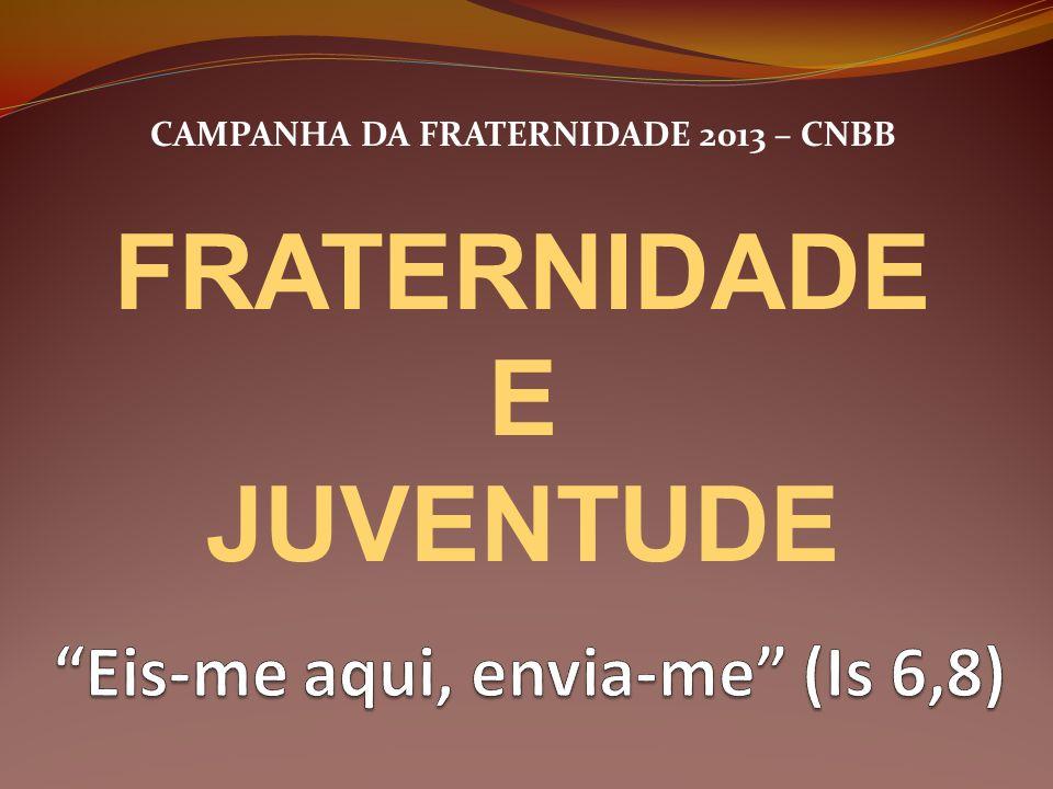CAMPANHA DA FRATERNIDADE 2013 – CNBB FRATERNIDADE E JUVENTUDE