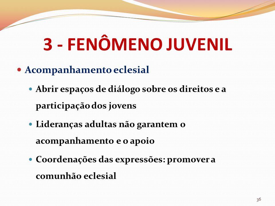 3 - FENÔMENO JUVENIL Acompanhamento eclesial Abrir espaços de diálogo sobre os direitos e a participação dos jovens Lideranças adultas não garantem o