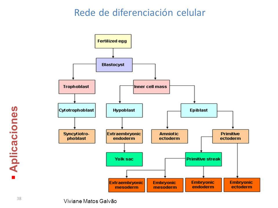 38 Rede de diferenciación celular Viviane Matos Galvão Aplicaciones Aplicaciones