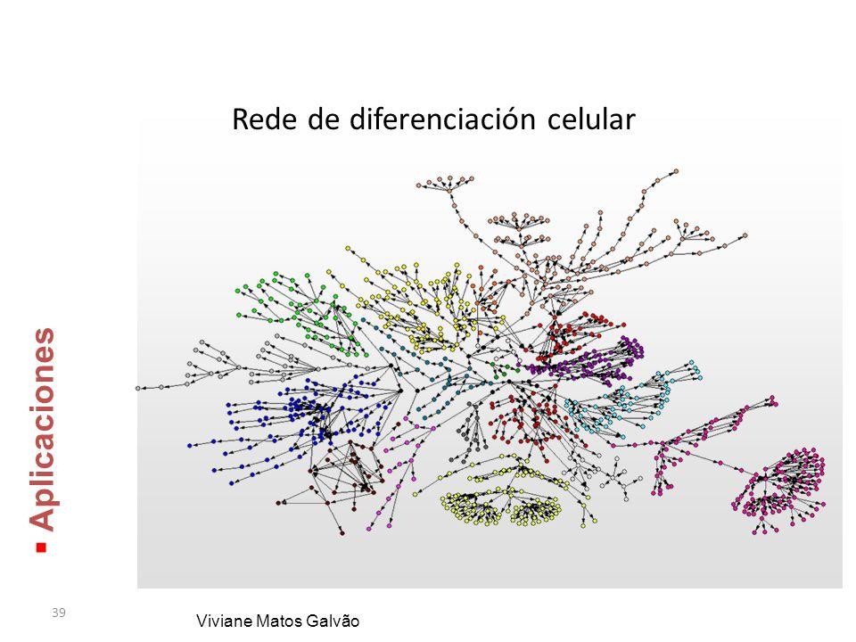 39 Rede de diferenciación celular Viviane Matos Galvão Aplicaciones Aplicaciones