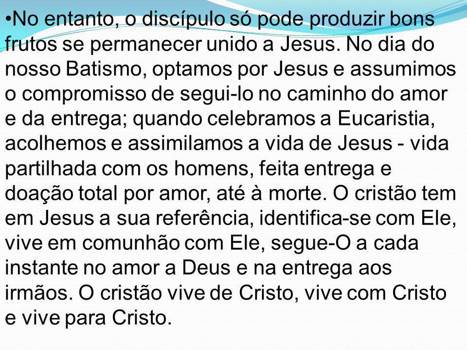 No entanto, o discípulo só pode produzir bons frutos se permanecer unido a Jesus. No dia do nosso Batismo, optamos por Jesus e assumimos o compromisso