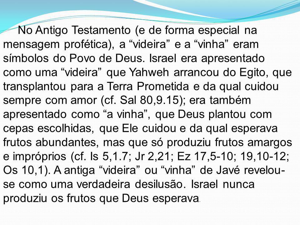 No Antigo Testamento (e de forma especial na mensagem profética), a videira e a vinha eram símbolos do Povo de Deus. Israel era apresentado como uma v