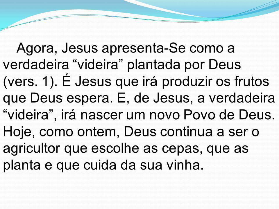 Agora, Jesus apresenta-Se como a verdadeira videira plantada por Deus (vers. 1). É Jesus que irá produzir os frutos que Deus espera. E, de Jesus, a ve