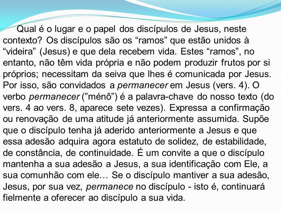 Qual é o lugar e o papel dos discípulos de Jesus, neste contexto? Os discípulos são os ramos que estão unidos à videira (Jesus) e que dela recebem vid