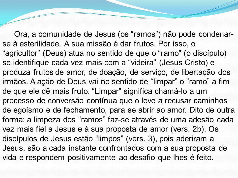 Ora, a comunidade de Jesus (os ramos) não pode condenar- se à esterilidade. A sua missão é dar frutos. Por isso, o agricultor (Deus) atua no sentido d