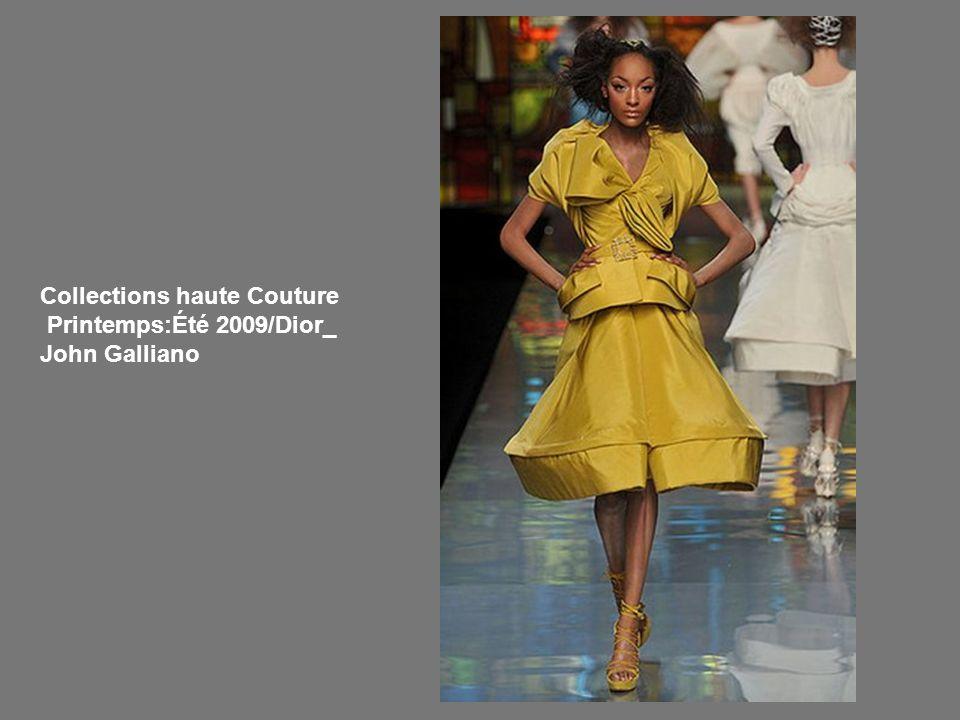Collections haute Couture Printemps:Été 2009/Dior_ John Galliano