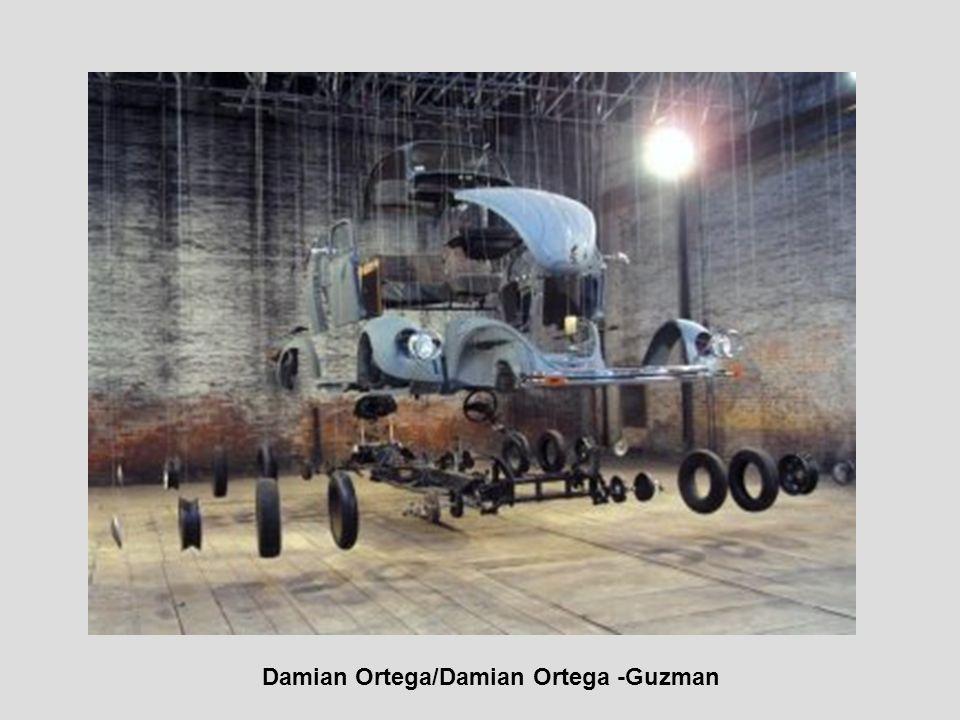 Damian Ortega/Damian Ortega -Guzman
