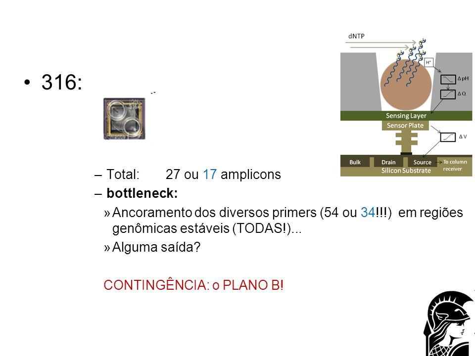 316: –Total: 27 ou 17 amplicons –bottleneck: »Ancoramento dos diversos primers (54 ou 34!!!) em regiões genômicas estáveis (TODAS!)... »Alguma saída?