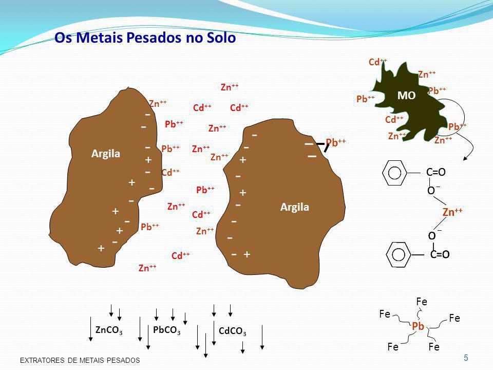 Os Metais Pesados no Solo Pb ++ Cd ++ Zn ++ Pb ++ Cd ++ Zn ++ C=O O O Zn ++ C=O O O PbCO 3 ZnCO 3 CdCO 3 + + - - - - - - + - - - - - - - - + + + + + -