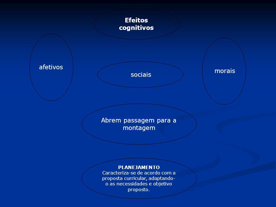 afetivos morais Efeitos cognitivos sociais Abrem passagem para a montagem PLANEJAMENTO Caracteriza-se de acordo com a proposta curricular, adaptando-
