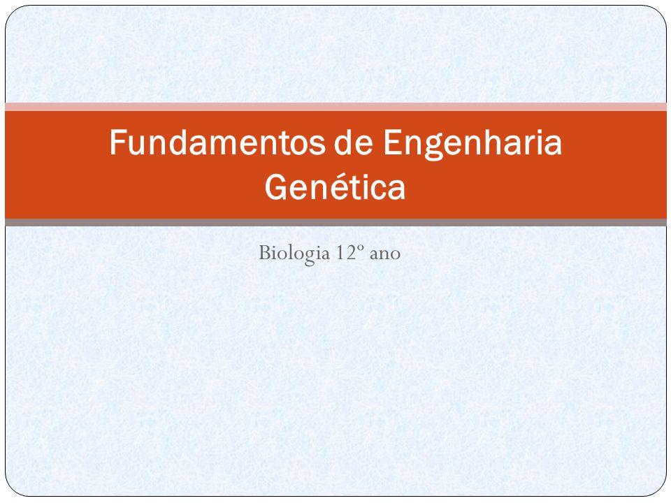 Biologia 12º ano Fundamentos de Engenharia Genética
