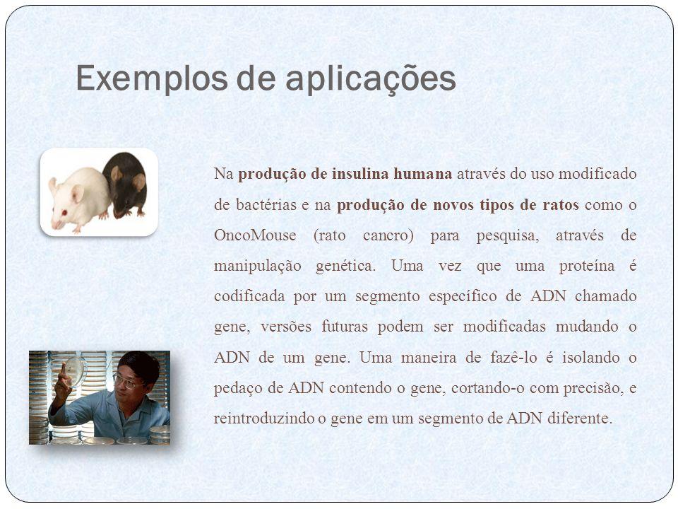 Exemplos de aplicações Na produção de insulina humana através do uso modificado de bactérias e na produção de novos tipos de ratos como o OncoMouse (r