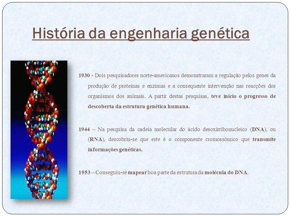 História da engenharia genética 1930 - Dois pesquisadores norte-americanos demonstraram a regulação pelos genes da produção de proteínas e enzimas e a