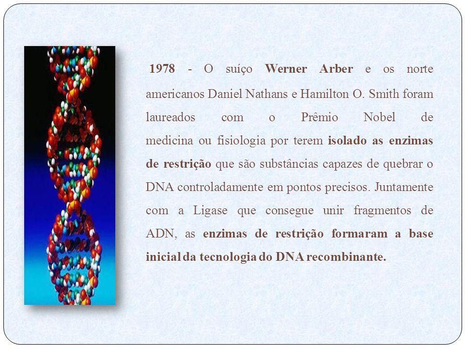 1978 - O suíço Werner Arber e os norte americanos Daniel Nathans e Hamilton O. Smith foram laureados com o Prêmio Nobel de medicina ou fisiologia por