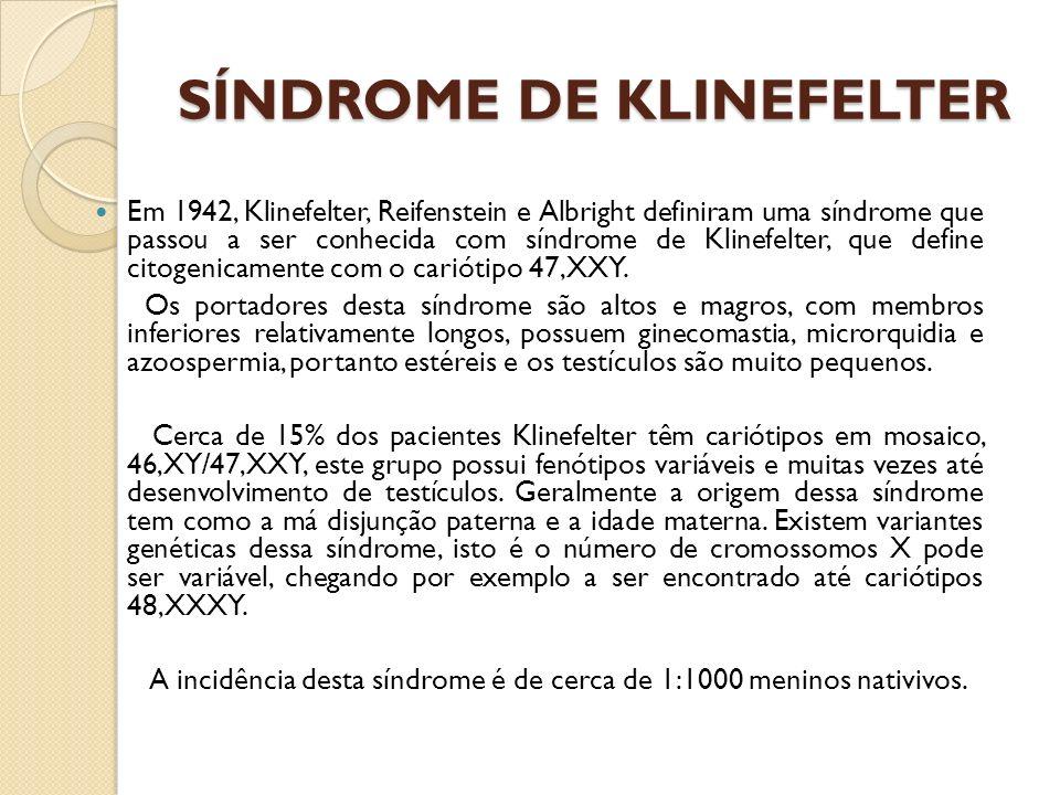 SÍNDROME DE KLINEFELTER Em 1942, Klinefelter, Reifenstein e Albright definiram uma síndrome que passou a ser conhecida com síndrome de Klinefelter, qu
