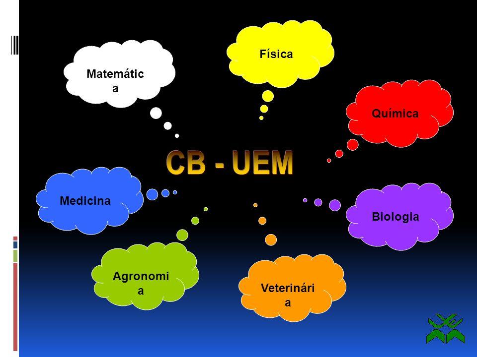 Centro Multidisciplinar :