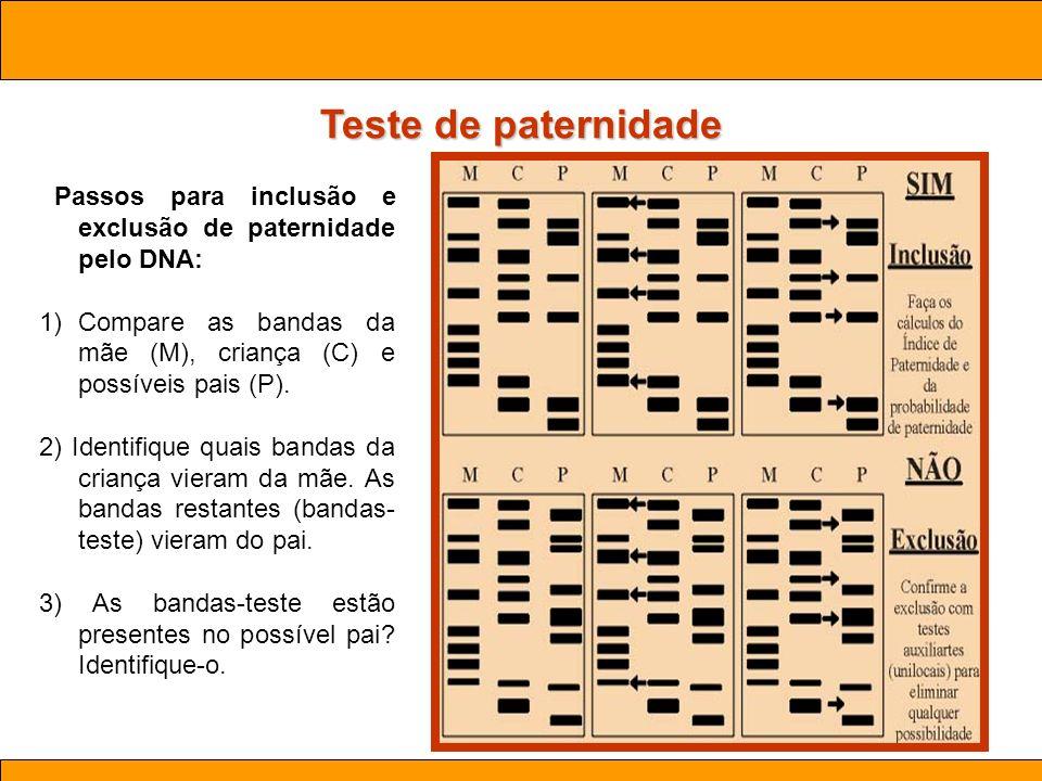 Ciências. Aula 03 Biotecnologia Teste de paternidade Passos para inclusão e exclusão de paternidade pelo DNA: 1)Compare as bandas da mãe (M), criança