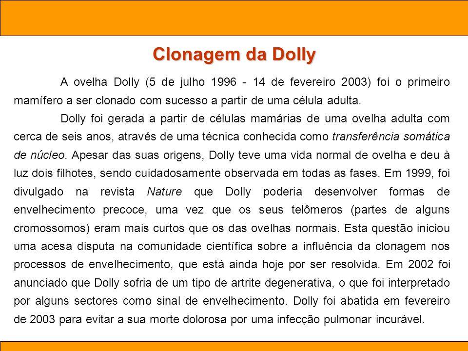 Ciências. Aula 03 Biotecnologia Clonagem da Dolly A ovelha Dolly (5 de julho 1996 - 14 de fevereiro 2003) foi o primeiro mamífero a ser clonado com su