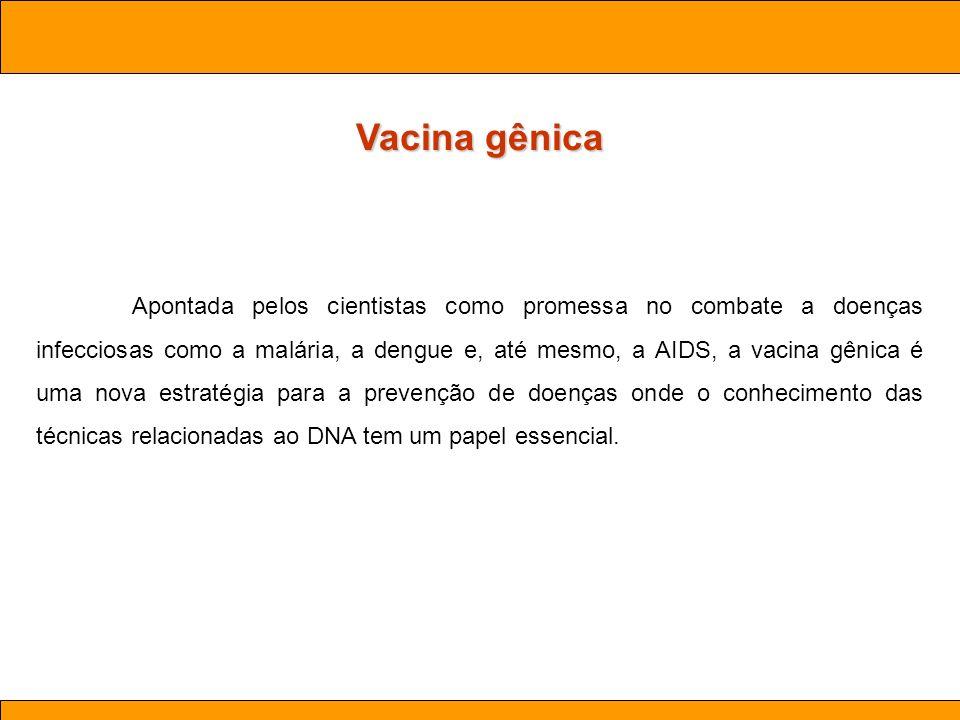 Ciências. Aula 03 Biotecnologia Vacina gênica Apontada pelos cientistas como promessa no combate a doenças infecciosas como a malária, a dengue e, até