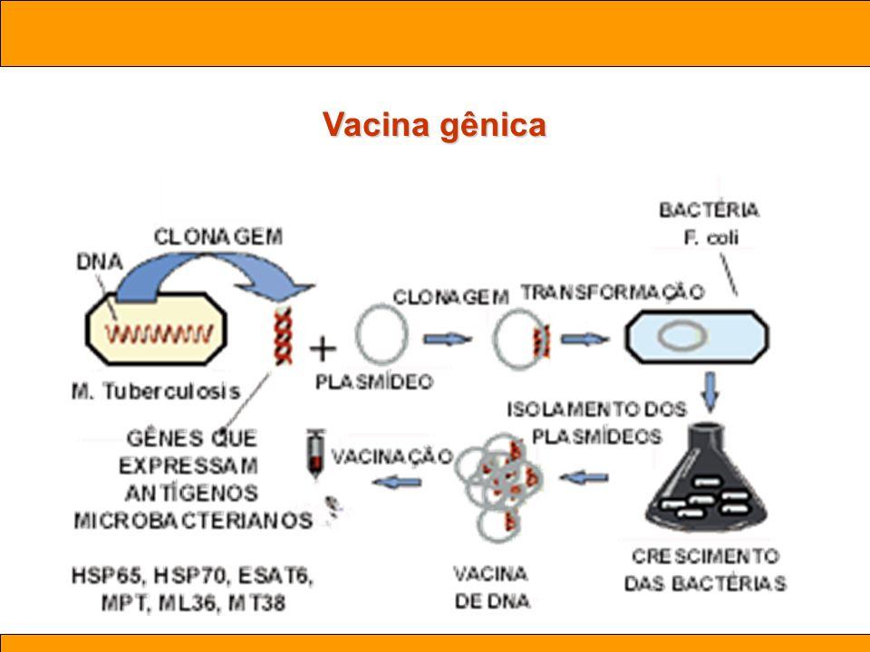 Ciências. Aula 03 Biotecnologia Vacina gênica