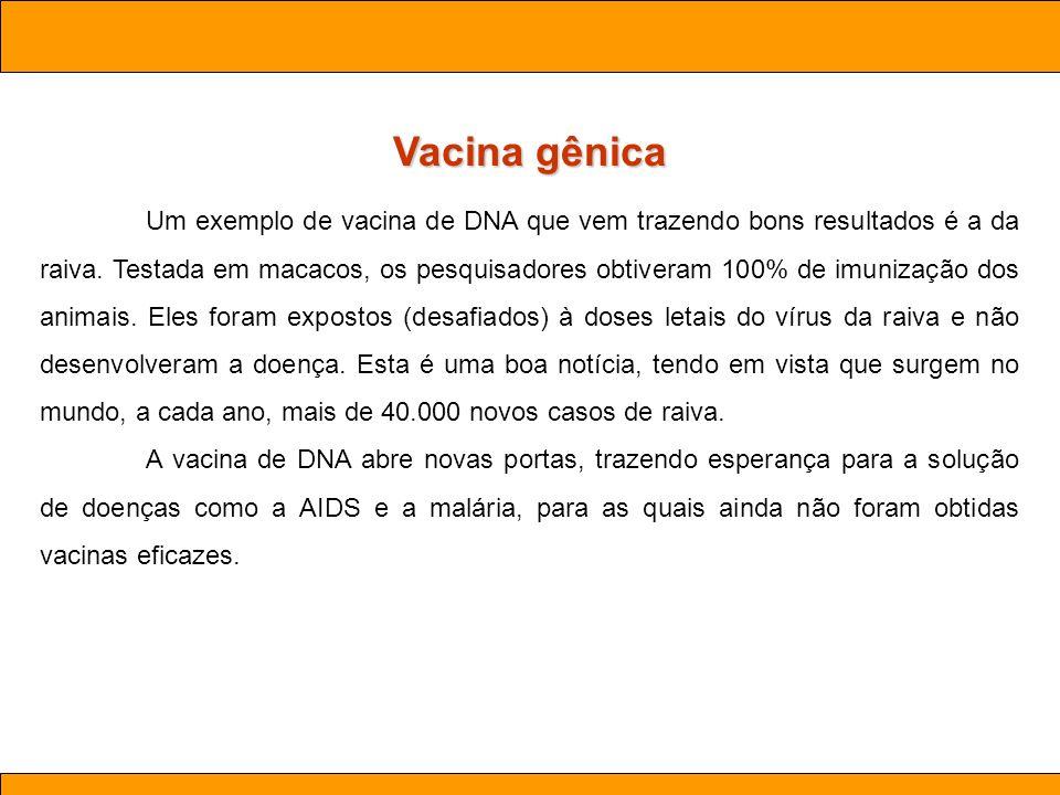 Ciências. Aula 03 Biotecnologia Vacina gênica Um exemplo de vacina de DNA que vem trazendo bons resultados é a da raiva. Testada em macacos, os pesqui