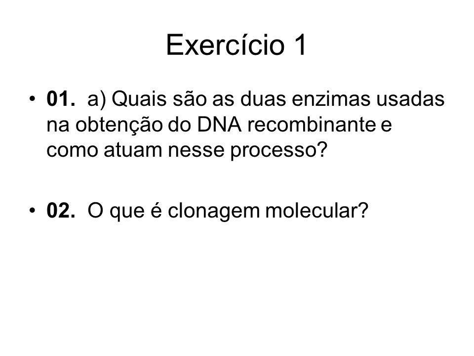 Exercício 1 01. a) Quais são as duas enzimas usadas na obtenção do DNA recombinante e como atuam nesse processo? 02. O que é clonagem molecular?