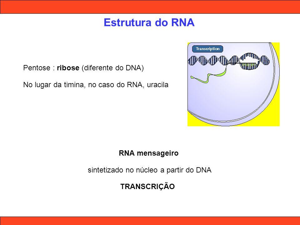 Código genético A cada 3 nucleotídeos no DNA, forma-se um CÓDON Cada códon codifica um aminoácido, que é a unidade básica da estrutura das proteínas A seqüência destes códons no DNA é copiada em RNA mensageiro A seqüência dos aminoácidos, determinada pela sequência de códons é que dá origem às diferentes proteínas