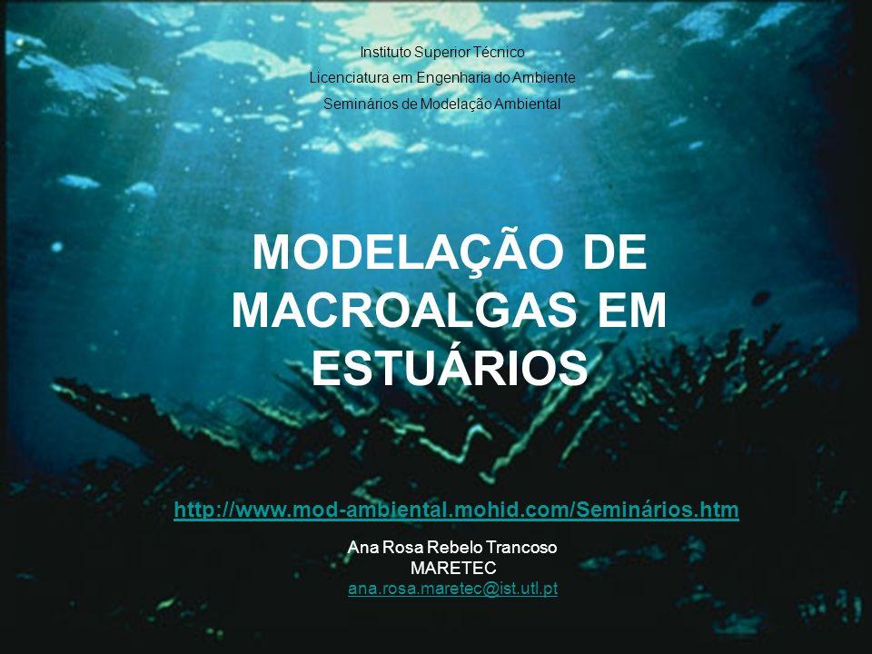 11/28 Biomassa Altura do Leito Morfologia Extinção no Leito de Macroalgas a – área especifica de auto-ensombramento [m 2.kgC -1 ] Extinção da Luz – Leito de macroalgas
