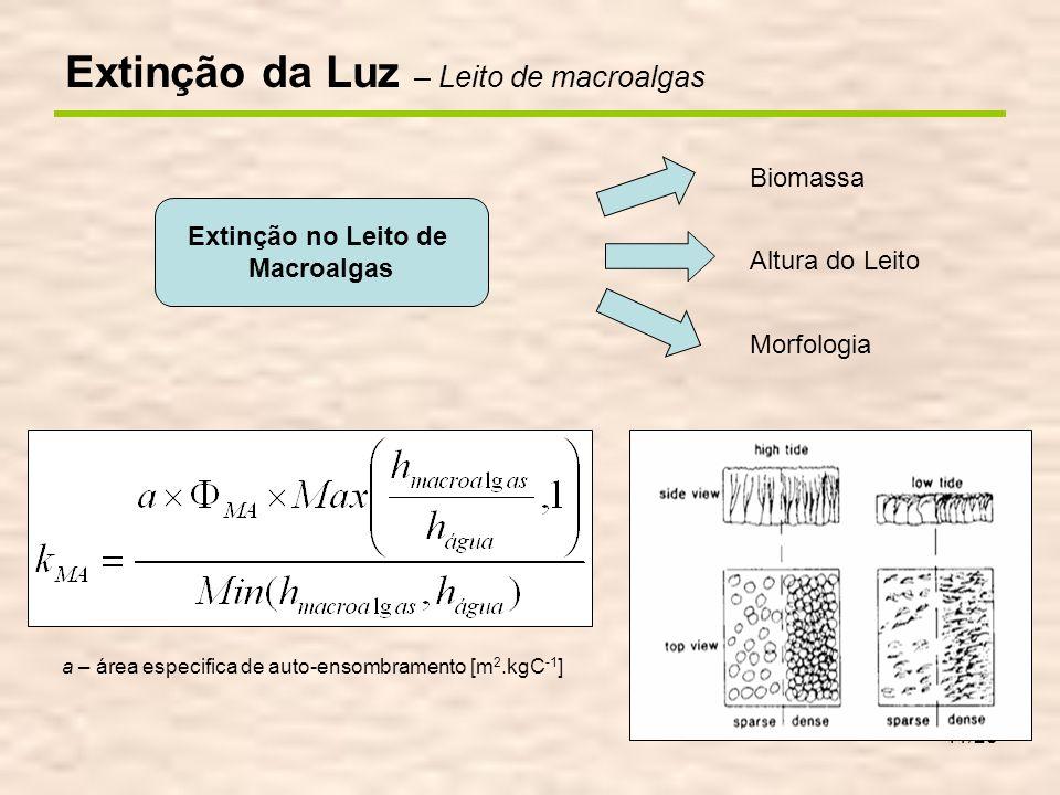 11/28 Biomassa Altura do Leito Morfologia Extinção no Leito de Macroalgas a – área especifica de auto-ensombramento [m 2.kgC -1 ] Extinção da Luz – Le
