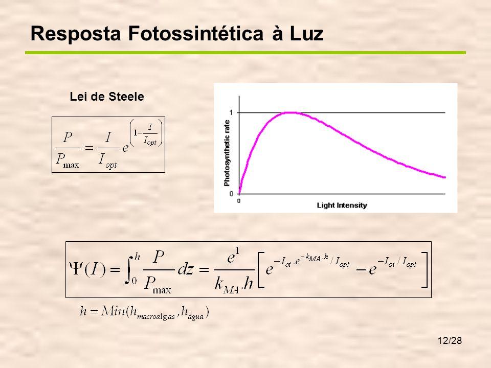 12/28 Lei de Steele I o1 =I o.e -k1.z1 I oi =I o(i-1).e -ki.zi 0 z1z1 zizi h Resposta Fotossintética à Luz