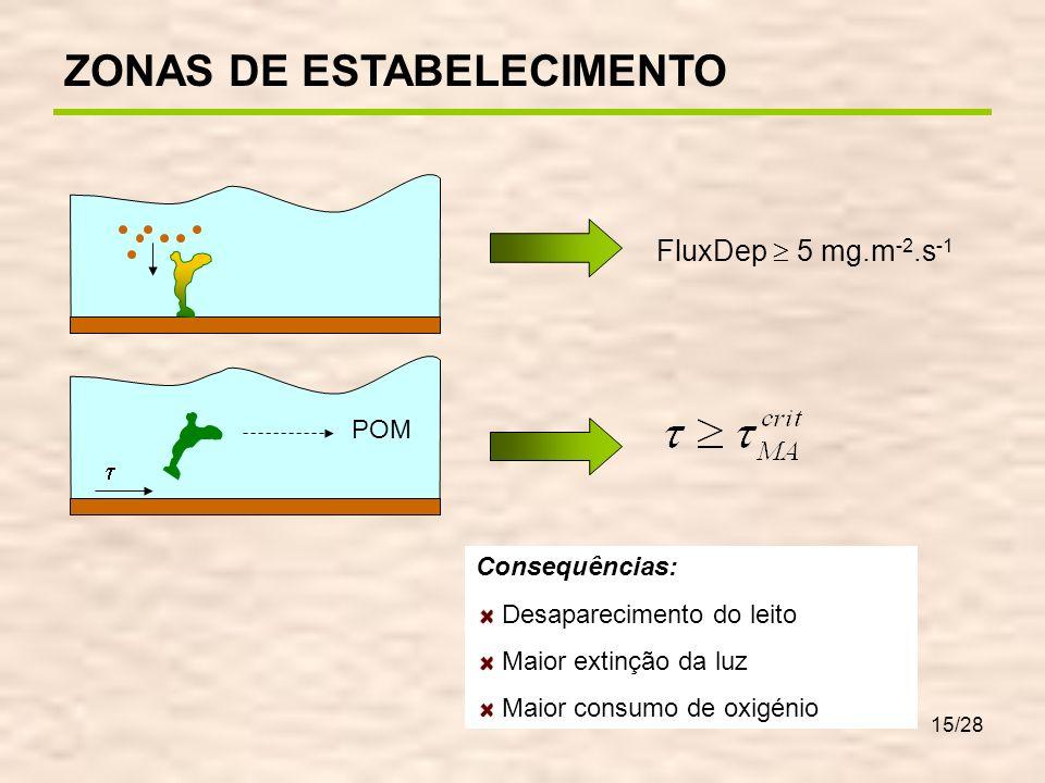 15/28 POM Consequências: Desaparecimento do leito Maior extinção da luz Maior consumo de oxigénio FluxDep 5 mg.m -2.s -1 ZONAS DE ESTABELECIMENTO