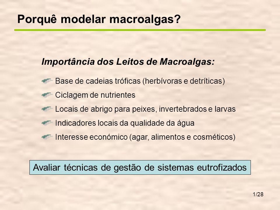 1/28 Importância dos Leitos de Macroalgas: Base de cadeias tróficas (herbívoras e detríticas) Ciclagem de nutrientes Locais de abrigo para peixes, inv