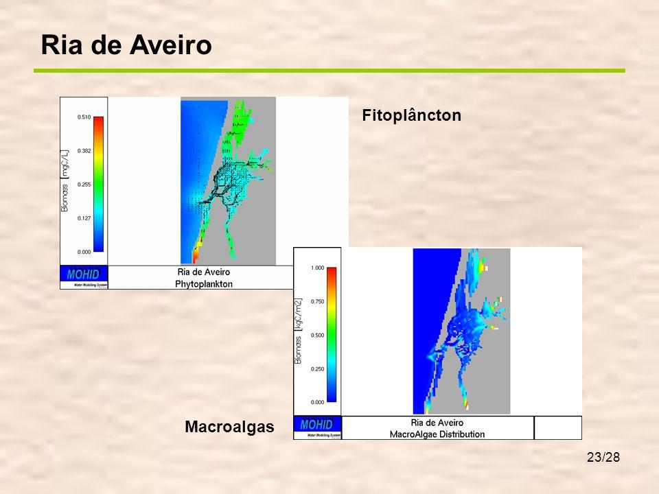 23/28 Ria de Aveiro Fitoplâncton Macroalgas