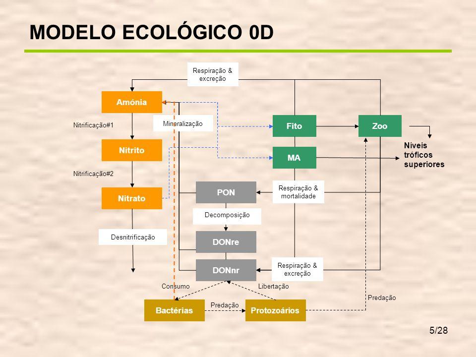 6/28 Fitoplâncton Macroalgas Transportado na coluna de água Biomassa: kg.m -3 (3D) C:N:P Redfield 106:16:1 Rápido crescimento e consumo de nutrientes Limitação pela luz depende de: – coluna de água Fixas no substrato Biomassa: kg.m -2 (2D) C:N:P Atkinson 550:30:1 Lento crescimento e consumo de nutrientes Limitação pela luz depende de: – coluna de água – nível da água – biomassa no leito DIFERENÇAS