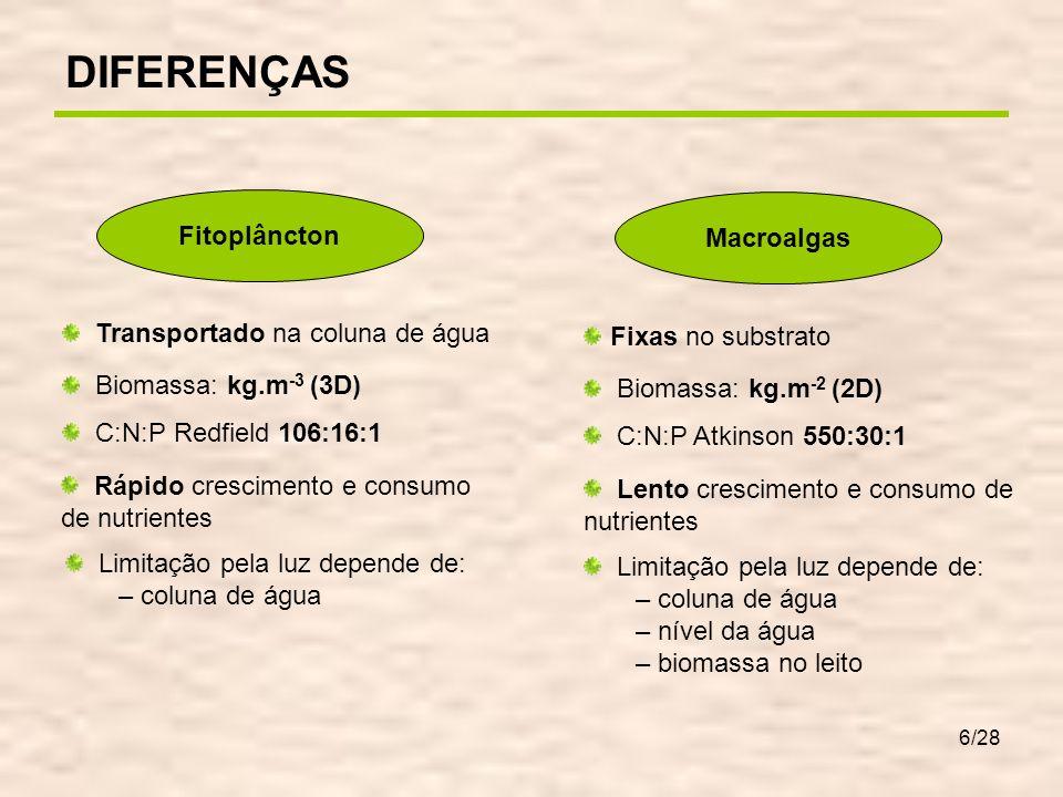 6/28 Fitoplâncton Macroalgas Transportado na coluna de água Biomassa: kg.m -3 (3D) C:N:P Redfield 106:16:1 Rápido crescimento e consumo de nutrientes